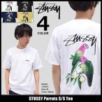 ステューシー STUSSY Tシャツ メンズ Parrots 1904023