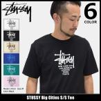 ステューシー STUSSY Tシャツ メンズ Big Cities 1904062