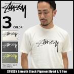 ステューシー STUSSY Tシャツ メンズ Smooth Stock Pigment Dyed 1904086