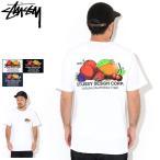 ステューシー Tシャツ 半袖 STUSSY メンズ Fresh Fruit ( stussy tee T-SHIRTS カットソー トップス 男性用 1904542 USAモデル 正規 )