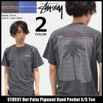 ステューシー STUSSY Tシャツ メンズ Dot Palm Pigment Dyed Pocket 1944040