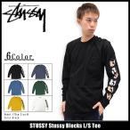 ステューシー STUSSY Tシャツ 長袖 メンズ Stussy Blocks(stussy tee カットソー トップス ロンt 男性用 1993940)