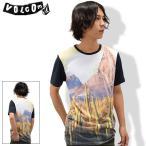 ショッピングボルコム ボルコム VOLCOM カットソー 半袖 メンズ ダジャングル(VOLCOM Dajungle S/S Crew Tシャツ T-SHIRTS トップス メンズ 男性用 A0121505)