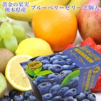 熊本県産 ブルーベリー 国産 ゼリー 2連(2個入140g×2)果物 ギフト 手土産 プレゼント 母の日 父の日