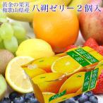 和歌山県産 八朔 国産 ゼリー 2連(2個入140g×2)果物 ギフト 手土産 プレゼント 母の日 父の日