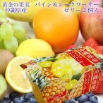 沖縄県産 パイン&シークアーサー 国産 ゼリー 2連(2個入140g×2)果物 ギフト 手土産 プレゼント 母の日 父の日