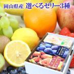 選べる 国産 果物 ゼリー 詰め合わせ 3種セット(6個入) ギフト 手土産 プレゼント 正午までのご注文で当日発送 母の日 予約可