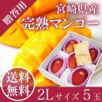 宮崎 完熟 マンゴー 2L5玉 JAはまゆう 送料無料 贈答用 母の日 父の日 お中元 フルーツ ギフト