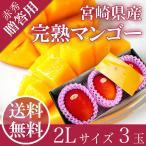 宮崎 完熟 マンゴー 赤秀 2L 3玉 JAはまゆう 送料無料 贈答用 母の日 父の日 お中元 フルーツ ギフト
