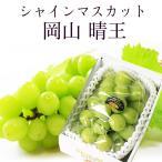 2021 ギフト 岡山県産 シャインマスカット 晴王 青秀品 1房400g 贈答用 葡萄 ブドウ 御礼 御祝 フルーツ