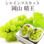 2021 ギフト 岡山県産 シャインマスカット 晴王 青秀品 2房400g×2 贈答用 葡萄 ブドウ ぶどう 御礼 御祝 フルーツ