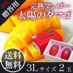 太陽のタマゴ 赤秀 3L2玉 宮崎 完熟 マンゴー JAはまゆう 送料無料 贈答用 母の日 父の日 お中元 フルーツ ギフト