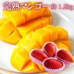 送料無料 完熟 マンゴー 大きさお任せ 1.2kg前後 大小混合 訳あり ご家庭用 簡易包装 宮崎県産