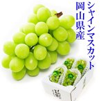 岡山県産 シャインマスカット 3〜6房 2kg 家庭用 ブドウ ぶどう 葡萄 9月上旬より発送 「 岡山市場工房 」