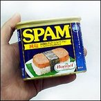 SPAM(スパム)・減塩340g ポークランチョンミート沖縄土産