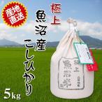 ふるさと名物商品 平成28年度産米 お米 一度食べたらヤミツキのおいしさ ご贈答にも最適 極上魚沼米 5kg 代引不可