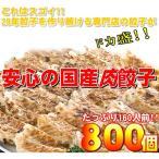 〔ワケあり〕安心の国産餃子800個 160人前(同梱・代引不可)
