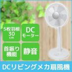 DCモーター リビング扇風機 30cm 5枚羽根 シンプル 首振り 静音 ファン メカ扇 微風付き テクノス TEKNOS KI-172DC