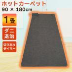 ホットカーペット 1畳 本体 電気カーペット 一人用 温度調節 本体 90×180cm ダニ退治 暖房家電 カーペット 敷物 マット