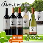 送料無料!チリワイン 飲み比べ パロ アルト 赤白5本セット 送料無料 お買得セット 750ML 5本