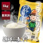 コシヒカリ 精米 5kg 送料無料 福島県産 29年産 新米