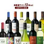 ビオワインだけ集めました!風と大地の自然派ワイン12本セット送料無料 高品質ワイン