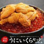 (生ウニ、イクラ) 無添加うに&北海道産いくらセット 丼4杯分 送料無料 《ref-ur1》 [[ウニイクラセット-2p]