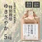 【農家直送】市川農場が世に出したお米「ゆきさやか」5kg【北海道旭川産】【送料無料】