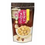 レーズンきなこ 100g×1袋[国産きなこ] トーノー 大豆イソフラボン