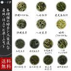 日本茶 選べる茶葉 100g×3袋(300g) 静岡 八女 鹿児島