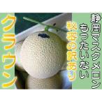 秘密の訳あり 静岡県産 クラウンメロン (マスクメロン) 1玉 送料無料 高級メロン