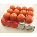 静岡県産 高糖度 フルーツトマト アメーラ 約1kg 送料無料
