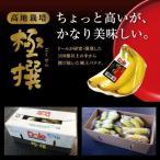 送料無料 Dole 高地栽培 極選 バナナ 1箱約7kg