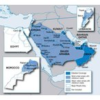 City Navigator Middle East & Northern Africa NT microSD(シティナビゲーター中東・北アフリカ NT マイクロSD) GARMIN ガーミン