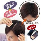 サンファミリー『かんたんおしゃれ 頭皮+髪用ファンデーション』