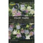 (宿根草) アキレギア ブルガリス タワーシリーズ フォーミュラミックス