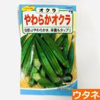 やわらかオクラ(種:ウタネ)(オクラ 家庭菜園 種 種子)
