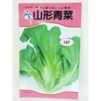 山形青菜(種:ウタネ)