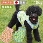 犬の服 iDog レモンランニング 防虫 moscape アイドッグ メール便OK