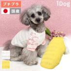 犬の服 iDog ボーダーフラワーTシャツ アイドッグ メール便OK