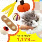猫用品 iCaToyセット