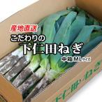 idosawa_99992622002005