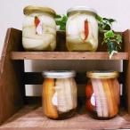 大阪特産野菜・水なす&玉ねぎの詰め合わせ 《泉州 旬のピクルスセット》 ピクルス ギフト