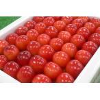 手詰の『佐藤錦/紅秀峰』は、まるで綺麗に並んだ赤いダイヤ!【福島産 特秀 佐藤錦/紅秀峰Lサイズ以上1kg手詰化粧箱】