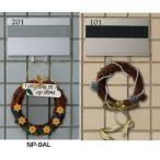 杉田エース ACE (213-501) アルミ室名札 フック付 NP-9AL ライトシルバー/ステンカラー
