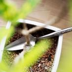 スコップ KUMEDA Forest gift trowel ハンドスコップ 粂田工業 コテ スコップ ガーデニング 庭いじり 園芸