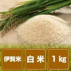 伊賀米 結びの神 白米1kg