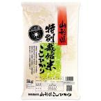 新米 (玄米) 特別栽培米 コシヒカリ 5kg 送料無料 山形県 置賜 令和2年産 (5キロ)
