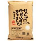 ひとめぼれ 5kg 送料無料 大分県 令和元年産 (米/白米 5キロ)