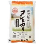 (玄米) コシヒカリ 5kg 送料無料 滋賀県 令和2年産 (5キロ)
